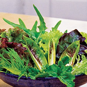1661 Mesclun Spicy Mix