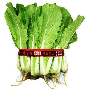 2165  korean cabbage (spring-summer)